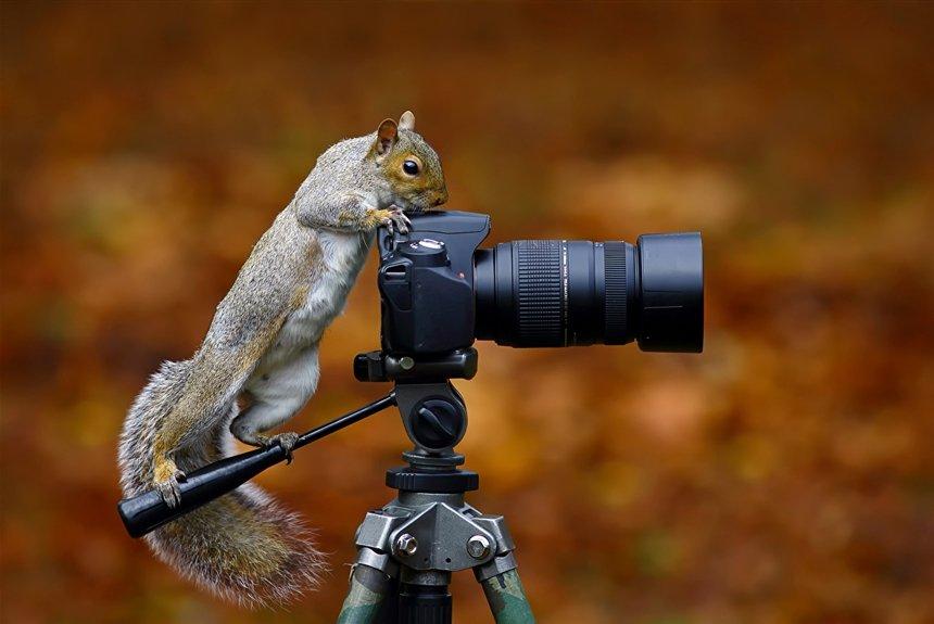 5 вещей, о которых вы пожалеете, став фотографом