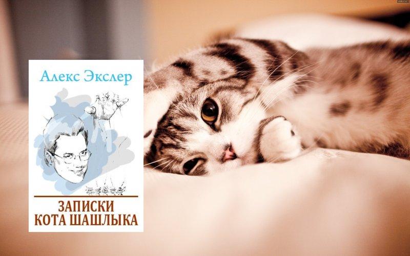 «Записки кота Шашлыка» Алекс Экслер