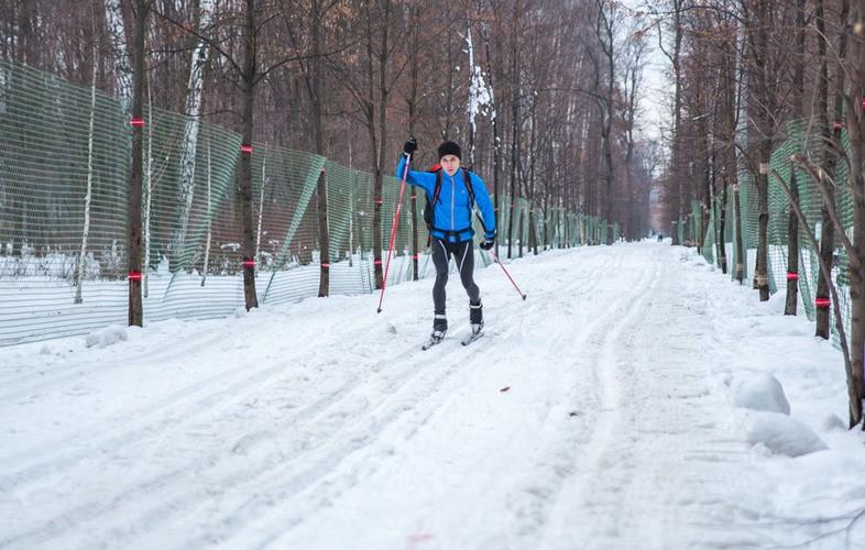 Лыжня Сокольники