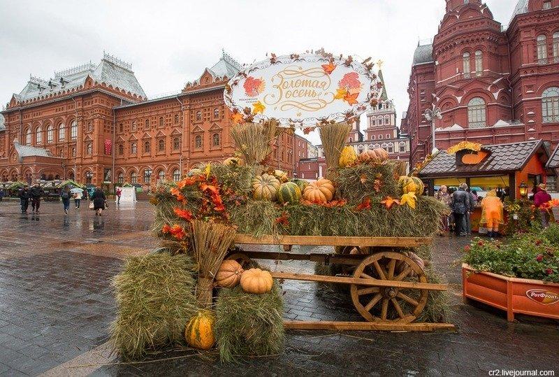 Фестиваль Золотая осень