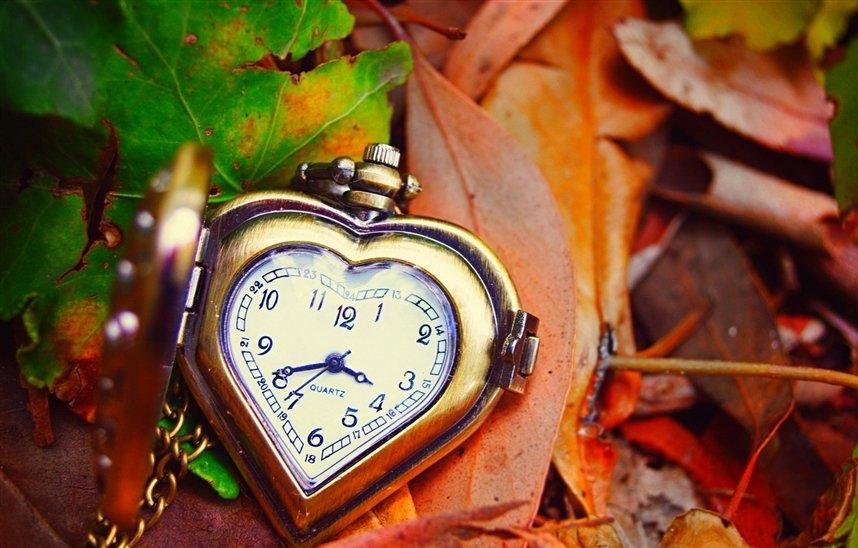 Пауза в любви