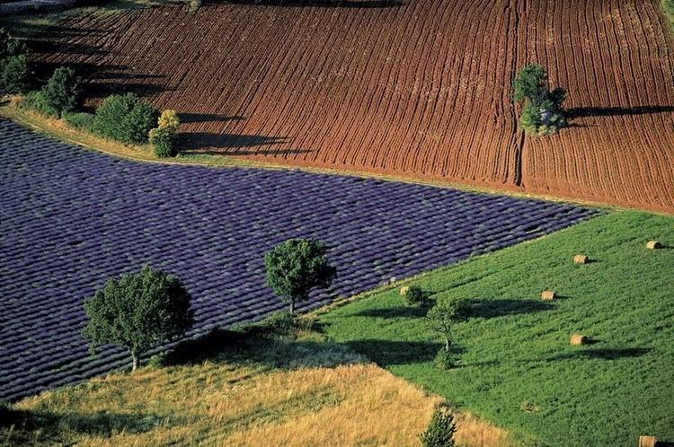 Сельские пейзажи близ Sarraud. Воклюз, Франция