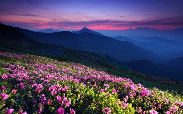 Природные чудеса Украины