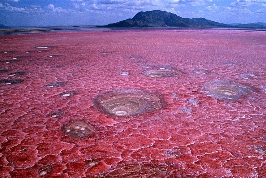 Озеро Натрон - смертельная красота Африки