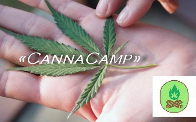 Открывается летний лагерь «CannaCamp» для любителей марихуаны
