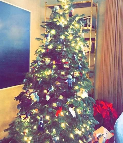рождественские елки звезд 2016